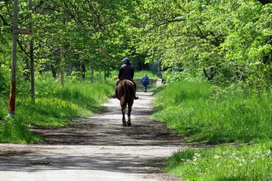 Relais Parco del Subasio | Agriturismo Assisi - A cavallo nel parco