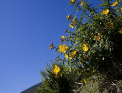 Relais Parco del Subasio | Agriturismo Assisi - Gallery 24