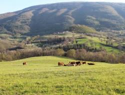 Relais Parco del Subasio | Agriturismo Assisi - Gallery 53