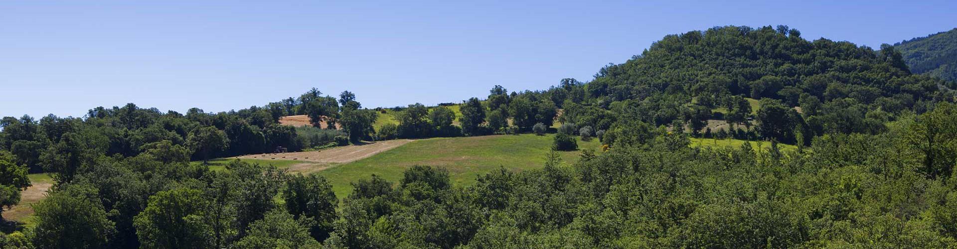 Relais Parco del Subasio | Agriturismo Assisi - Gallery Featured Image