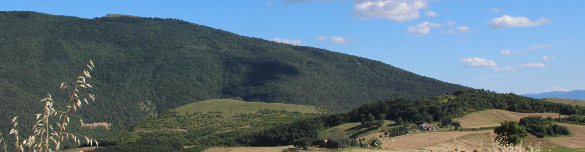Relais Parco del Subasio | Agriturismo Assisi - Scopri il Parco Featured Image