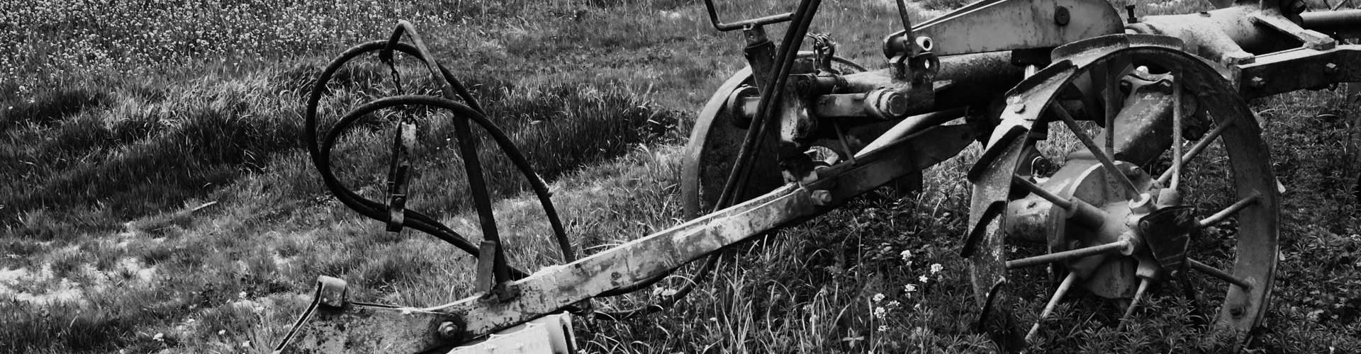 Relais Parco del Subasio | Agriturismo Assisi - Storia Featured Image